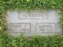 Harry J Cederlund