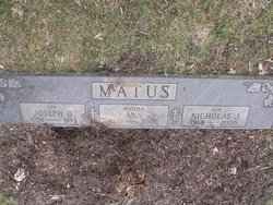 Nicholas J. Matus