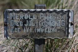 Herold P. Mock