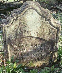Eliza <I>Niles</I> Angell