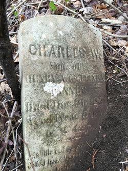 Charles Warren Tanner