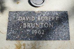 David Robert Brunton