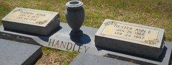 Hester Ann <I>Sutton</I> Handley