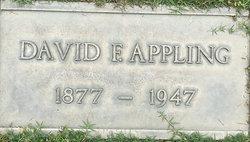 David Fulton Appling