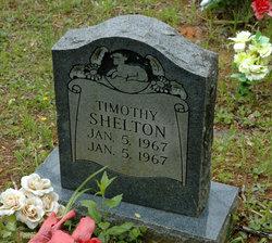 Timothy Shelton
