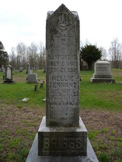 Nellie D. <I>Tennant</I> Briggs