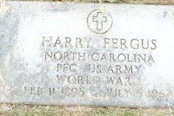 Harry Fergus
