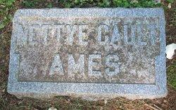 Nettye <I>Gault</I> Ames