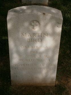 Martin White Eagle Bird