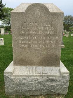 Betsey Elizabeth <I>Bliss</I> Hill
