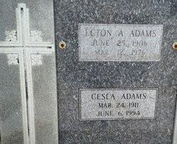 Cesla Marie <I>Savoie</I> Adams