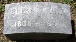 Eliza Ann <I>Smith</I> King