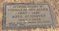 Thomas Henry Allice