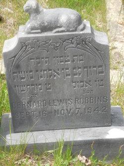 Bernard Lewis Robbins
