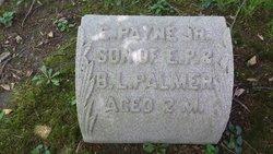Erroll Payne Palmer