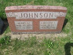 Henry L Johnson