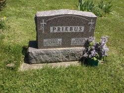 Reinhold W Priebus