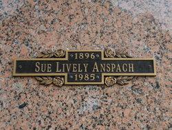 Sue V <I>Lively</I> Anspach