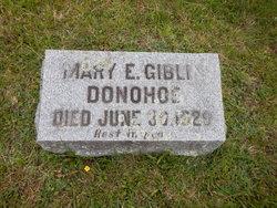 Mary Ellen <I>Giblin</I> Donahoe
