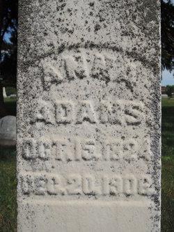 Anna <I>Perkins</I> Adams