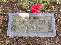 Oriole <I>Loar</I> Bishop