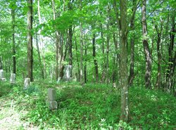 Wallace-Wilson Family Cemetery
