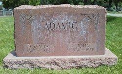 "Janez Joseph ""John"" Adamic"