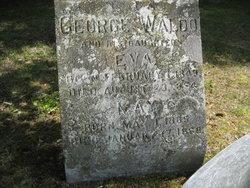 George Waldo