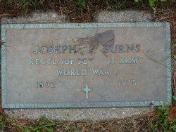 Joseph F Burns