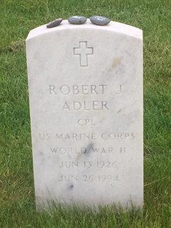 Robert J Adler