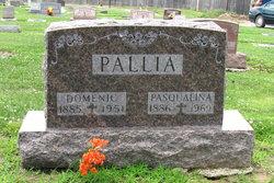 Pasqualina <I>Savio</I> Pallia