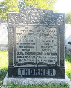 Gedalia Thorner
