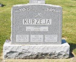 Evelyn M Kurzeja