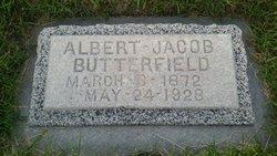 Albert Jacob Butterfield