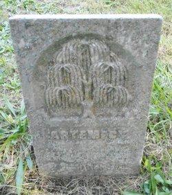 Artemecia Tritiminy Duerson