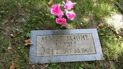Albert Alfred Jerome Biddle