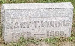 Mary T Morris