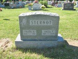 Anna P. Sternot