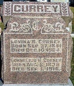 Cornelius H Currey
