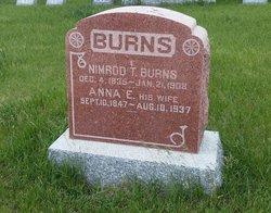 Nimrod Taylor Burns