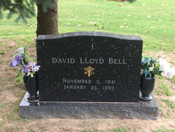 Dr David Lloyd Bell