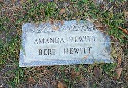 Amanda Elizabeth <I>Almy</I> Hewitt