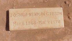 Joshua Newman Gibson