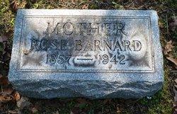 Rose <I>Ballenberg</I> Barnard