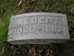 Albert E. Werlein