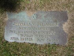 Pvt Charles V Feldblum