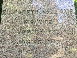 Elizabeth <I>Williams</I> Cilley