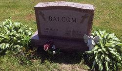 Allison K. <I>Regner</I> Balcom
