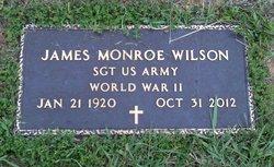 James Monroe Wilson