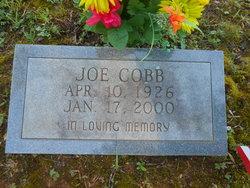 Joe Cobb